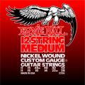 Струны Ernie Ball Medium 12-String 11-52 (2236)