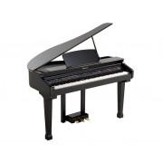 438PIA0634 Grand 120 Цифровой рояль, с автоаккомпанементом, черный, Orla
