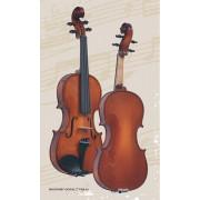B-V012 Beginer Genial 2 Nitro Скрипка 1/2, Gliga