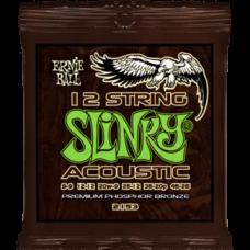 Струны Ernie Ball Acoustic Slinky 12-String 9-46 (2153)