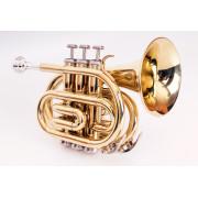 FLT-PT-L Труба компактная, Bb-key, лакированная, цвет - золото. Conductor
