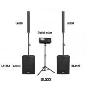 DLS22 Комплект акустических систем, сабвуфер, микшер, Soundking