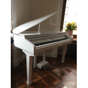 438PIA0633 Grand 120 Цифровой рояль, с автоаккомпанементом, белый, Orla