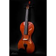 Freedom Cкрипка 4/4, Strunal