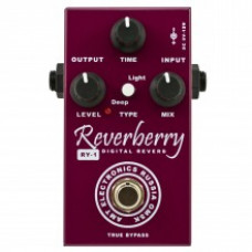 AMT RY-1 Reverberry Цифровой ревербератор