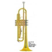 FLT-TR-3B Труба Conductor