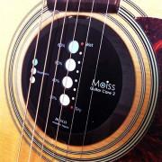 MOISS2-GC1 Moiss2 Увлажнитель для акустической гитары, Hosco