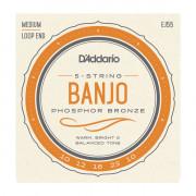 EJ55 Комплект струн для 5-струнного банджо, фосф.бронза, Medium, 10-23, D'Addario