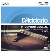 EJ73 Комплект струн для мандолины, фосф.бронза, Light, 10-38, D'Addario