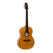 RGASNTCE Электро-акустическая гитара, NewTone